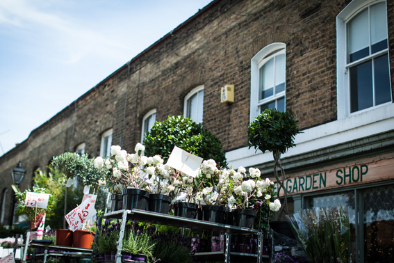 Hermione McCosh Photography, London, Columbia rd. Flower market,