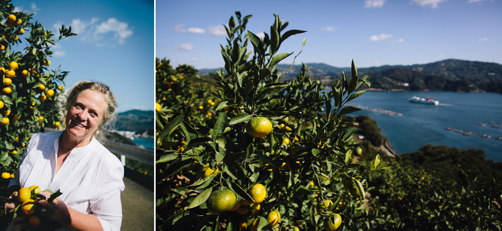 Citrus in Japan - Hermione McCosh Photography